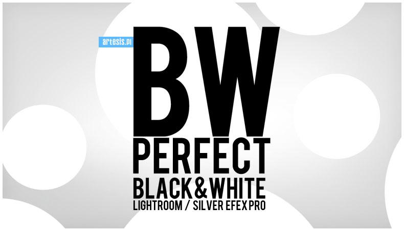 presety bw presets silver efex