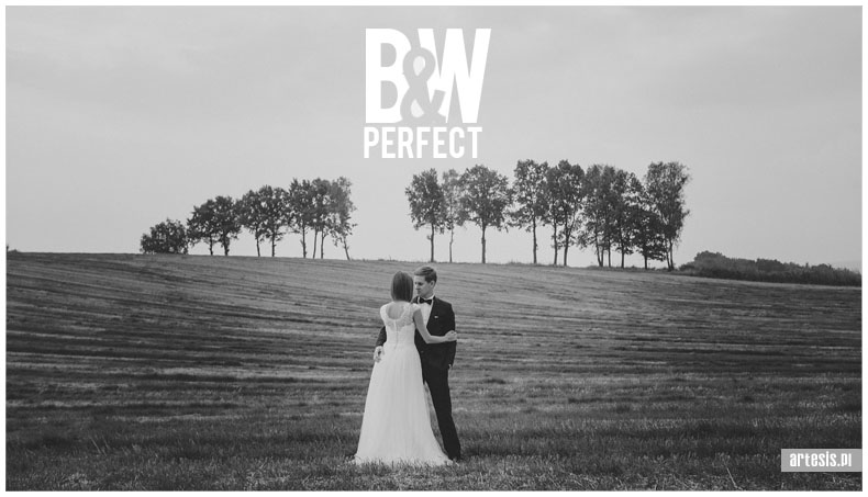presety bw presets lightroom silver efex wedding